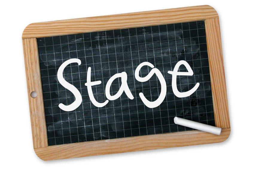 Stage e Tirocini, ecco cosa c'è da sapere.